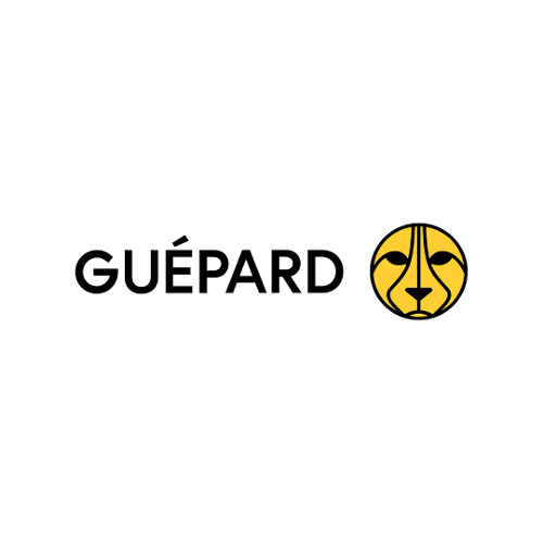 Guépard Communications