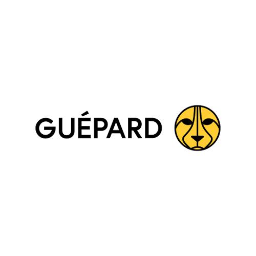 Guépard Communications