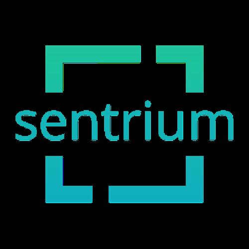 Sentrium - HubSpot Onboarding, CRM, Campaigns,  SEO, CMS, Website Development