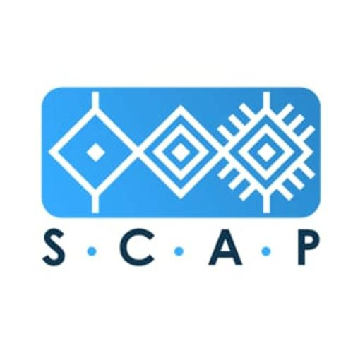 Scap Analysis