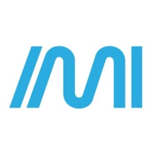 Internet Marketing Inc. (IMI)