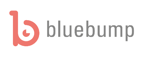 www.bluebump.nl